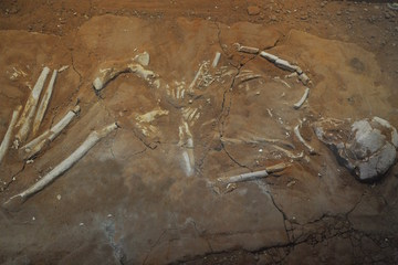 Zombie Burials? Ancient Greeks Used Rocks to Keep Bodies in Graves