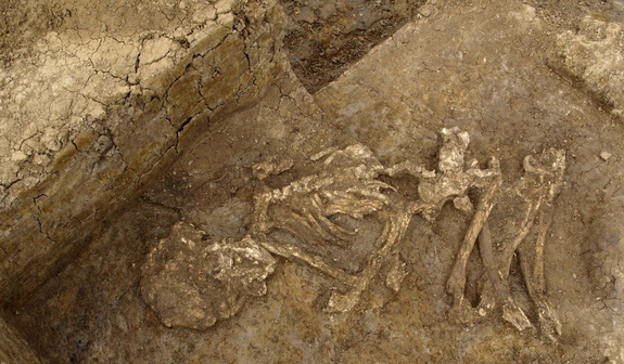 Bronze Age Britons Mummified Their Dead, Analysis Reveals