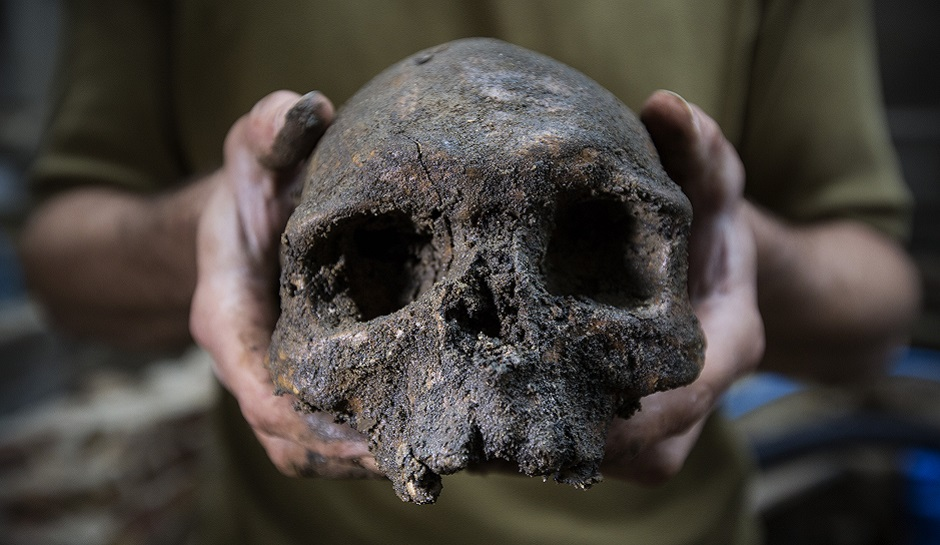 Bronze Age Plague Sheds Light On The Evolution Of Disease
