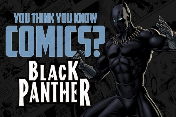 12 Facts You May Not Have Known About Black Panther
